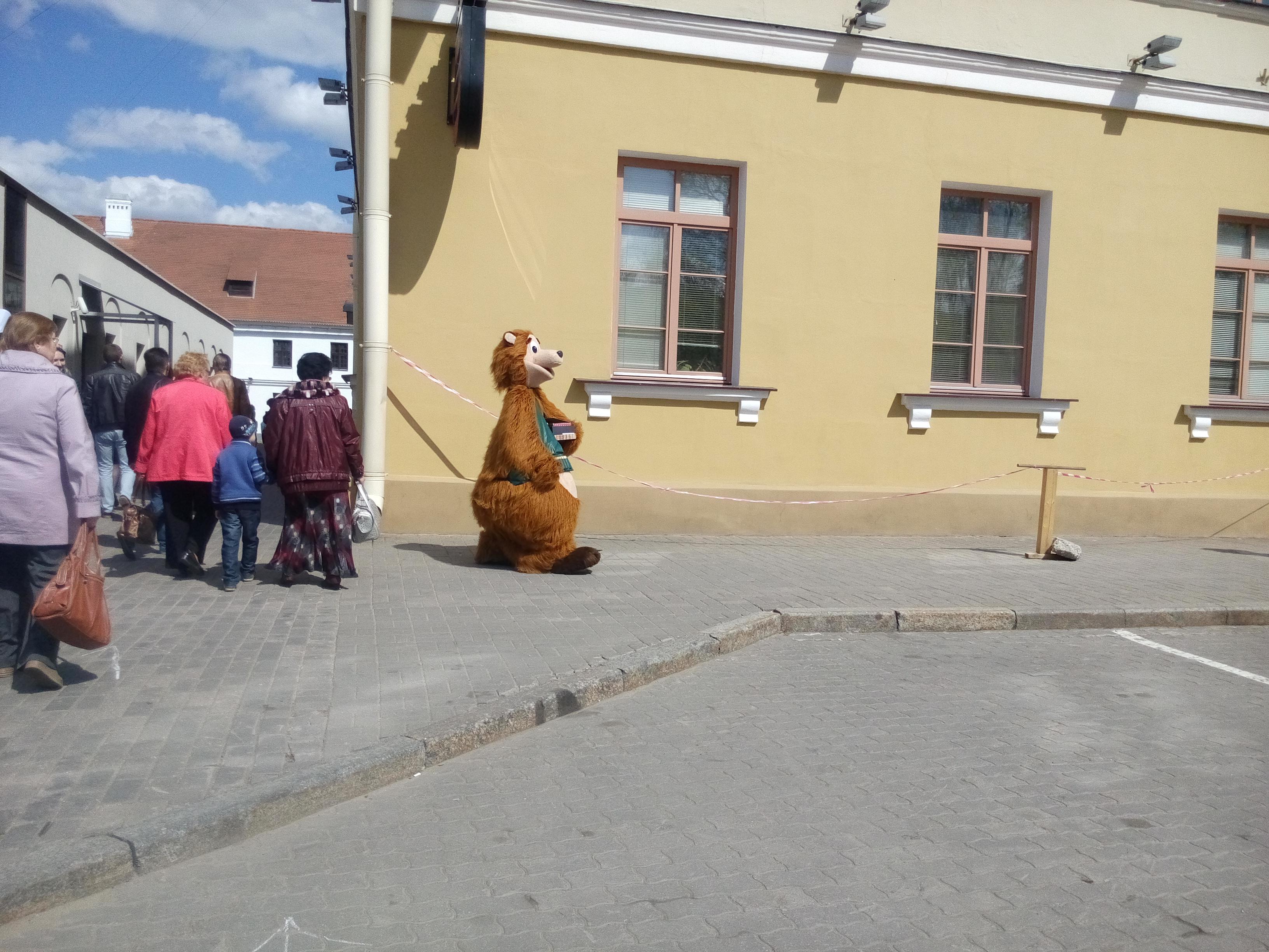 медведи на улицах Минска